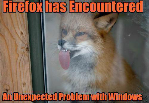 FunnyPart-com-firefox_vs_window.jpg