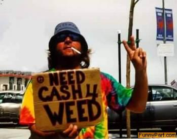 Need Weed Funny Picture